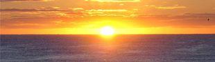 Illustration Top 10 — 'Demain, dès l'aube'