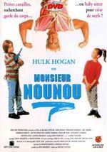 Affiche Monsieur Nounou