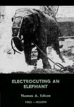 Affiche Electrocuting an Elephant