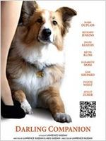 Affiche Darling Companion