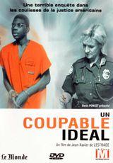 Affiche Un coupable idéal