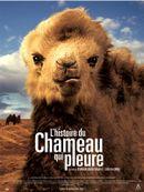 Affiche L'Histoire du chameau qui pleure
