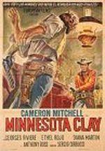 Affiche Le Justicier du Minnesota