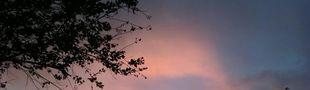 Cover Je suis amoureuse du ciel...