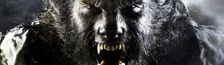 Cover Les Loups-Garou et le 7ème Art
