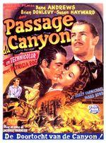Affiche Le Passage du canyon