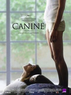 Affiche Canine