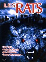 Affiche Les Rats