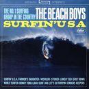 Pochette Surfin' USA