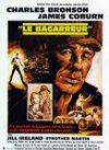 Affiche Le Bagarreur
