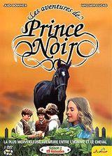 Affiche Les Aventures de Prince Noir