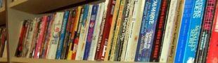 Cover Les meilleurs romans historiques