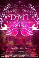 Affiche DMT : The Spirit Molecule