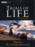 Affiche The Trials of Life