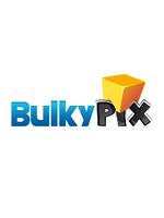 Logo Bulkypix