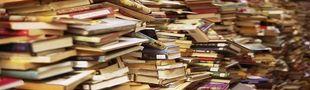 Cover Lus actuellement : Romans, Essais, etc...