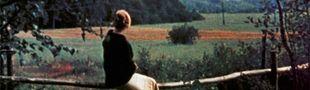 Cover Les meilleurs films du monde commentés brièvement