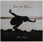 Pochette Into the Wild (OST)