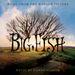 Pochette Big Fish (OST)