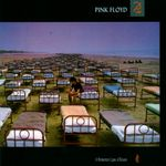 Pochette A Momentary Lapse of Reason