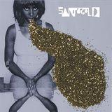 Pochette Santogold
