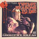 Pochette Twelve Reasons to Die