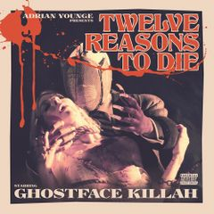 Pochette Twelve Reasons to Die