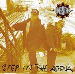Pochette Step in the Arena