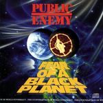 Pochette Fear of a Black Planet