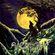 Pochette Nattens madrigal – aatte hymne til ulven i manden