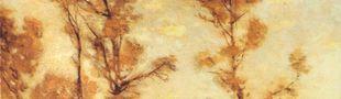 Pochette Autumn Aurora