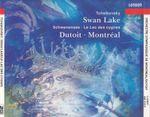 Pochette Swan Lake