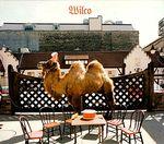 Pochette Wilco (The Album)