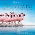 Pochette The Crimson Wing: Mystery of the Flamingos (OST)