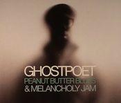 Pochette Peanut Butter Blues & Melancholy Jam