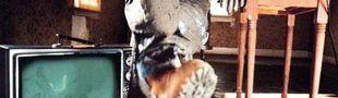 Pochette Muddy Waters
