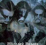 Pochette Blizzard Beasts