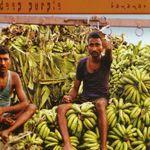 Pochette Bananas