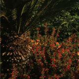 Pochette Something Good (Remixes)