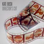 Pochette Director's Cut