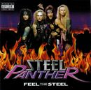 Pochette Feel the Steel