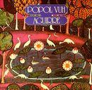 Pochette Aguirre (OST)