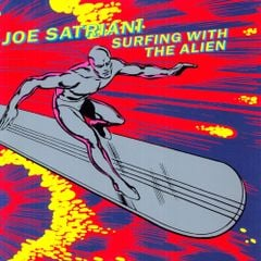Pochette Surfing With the Alien