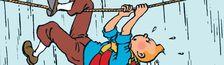 Cover Check-list : Tintin !