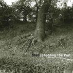 Pochette Shedding the Past