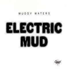 Pochette Electric Mud