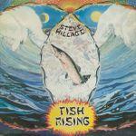 Pochette Fish Rising