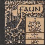 Pochette Faun and the Pagan Folk Festival: Live (Live)