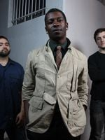 Logo Animals as Leaders