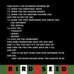 Pochette Bird Seed